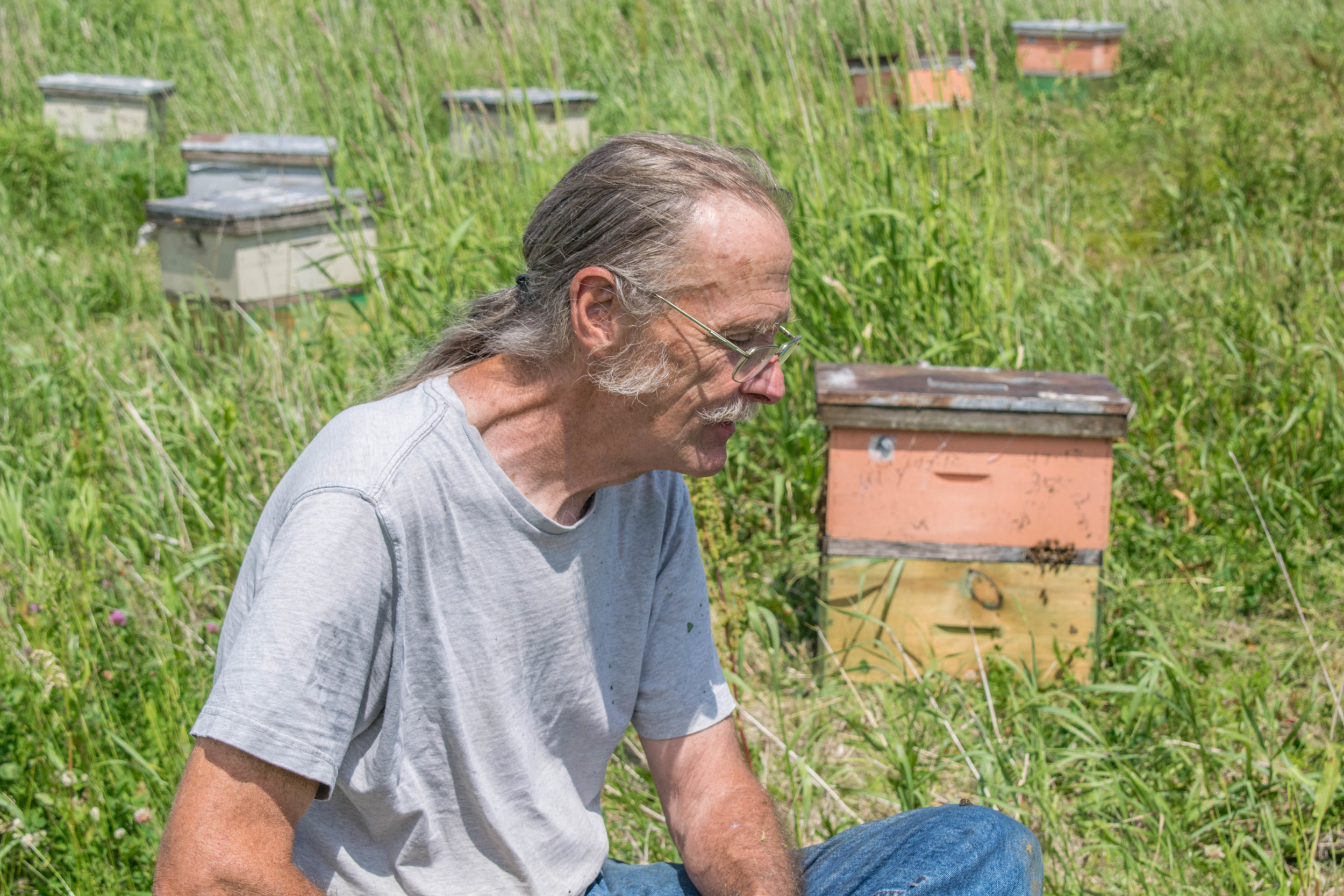 Mike the Thinker with Hive.jpg