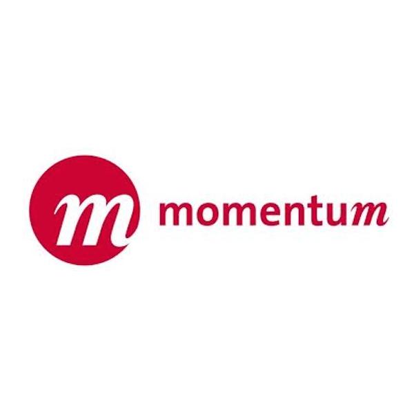 logo - momentum.jpg