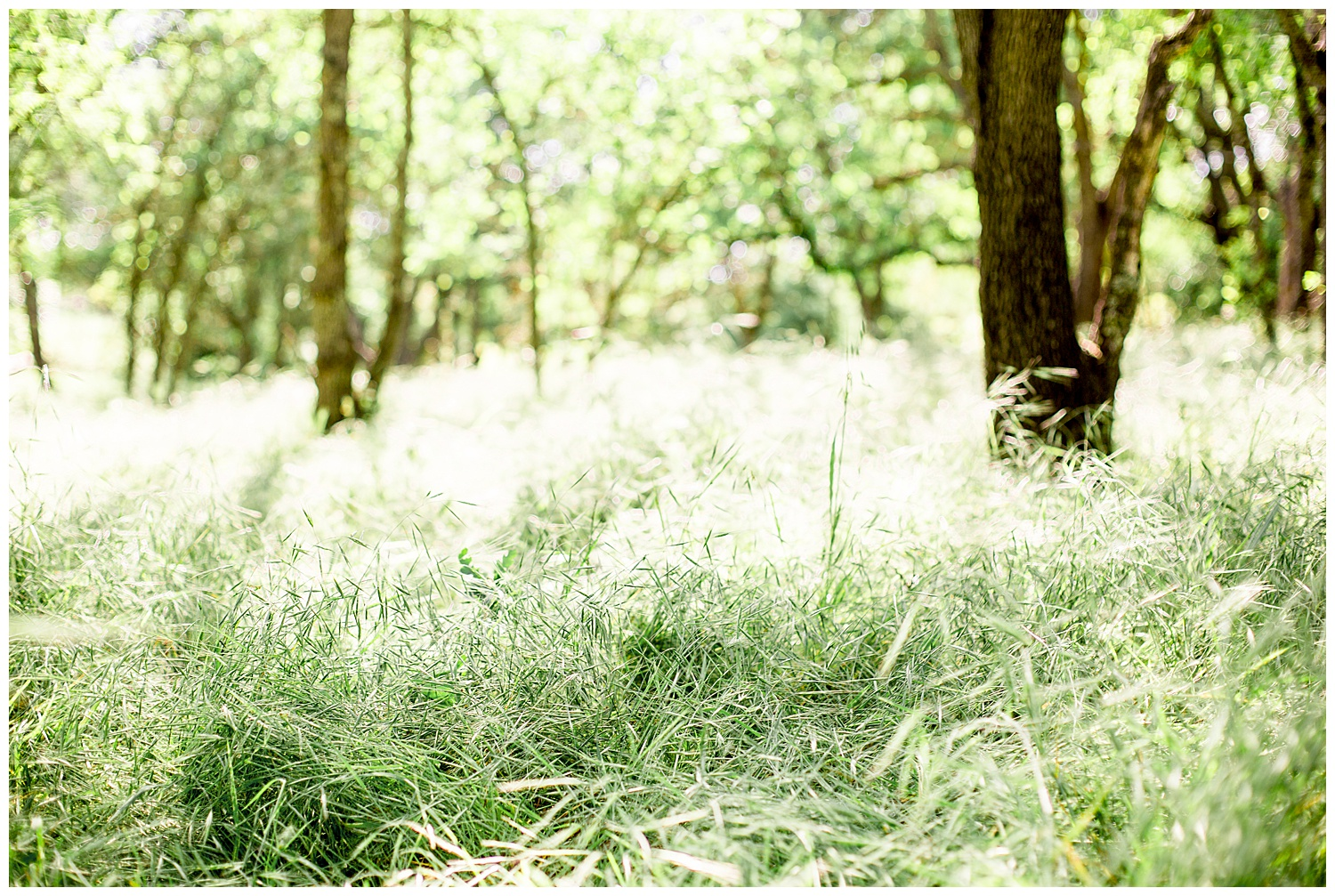 Country_Bridal_Portraits_Lace_Spring_Oregon_Photographer_Cowboy_Boots9.jpg