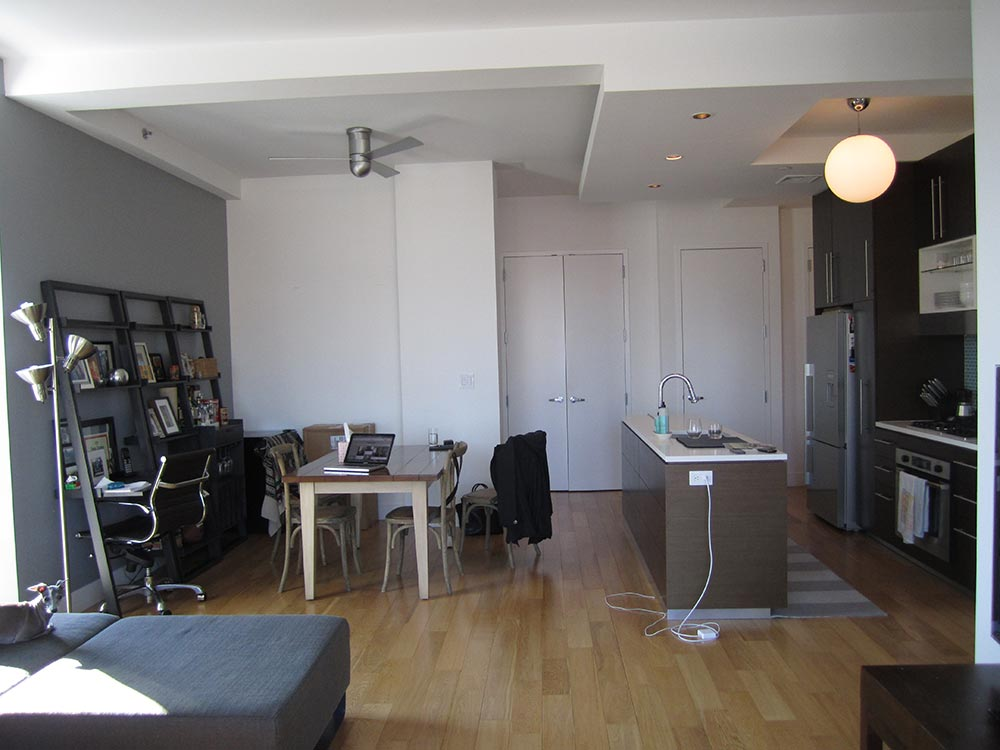 fort-greene-condo-1a-before.jpg