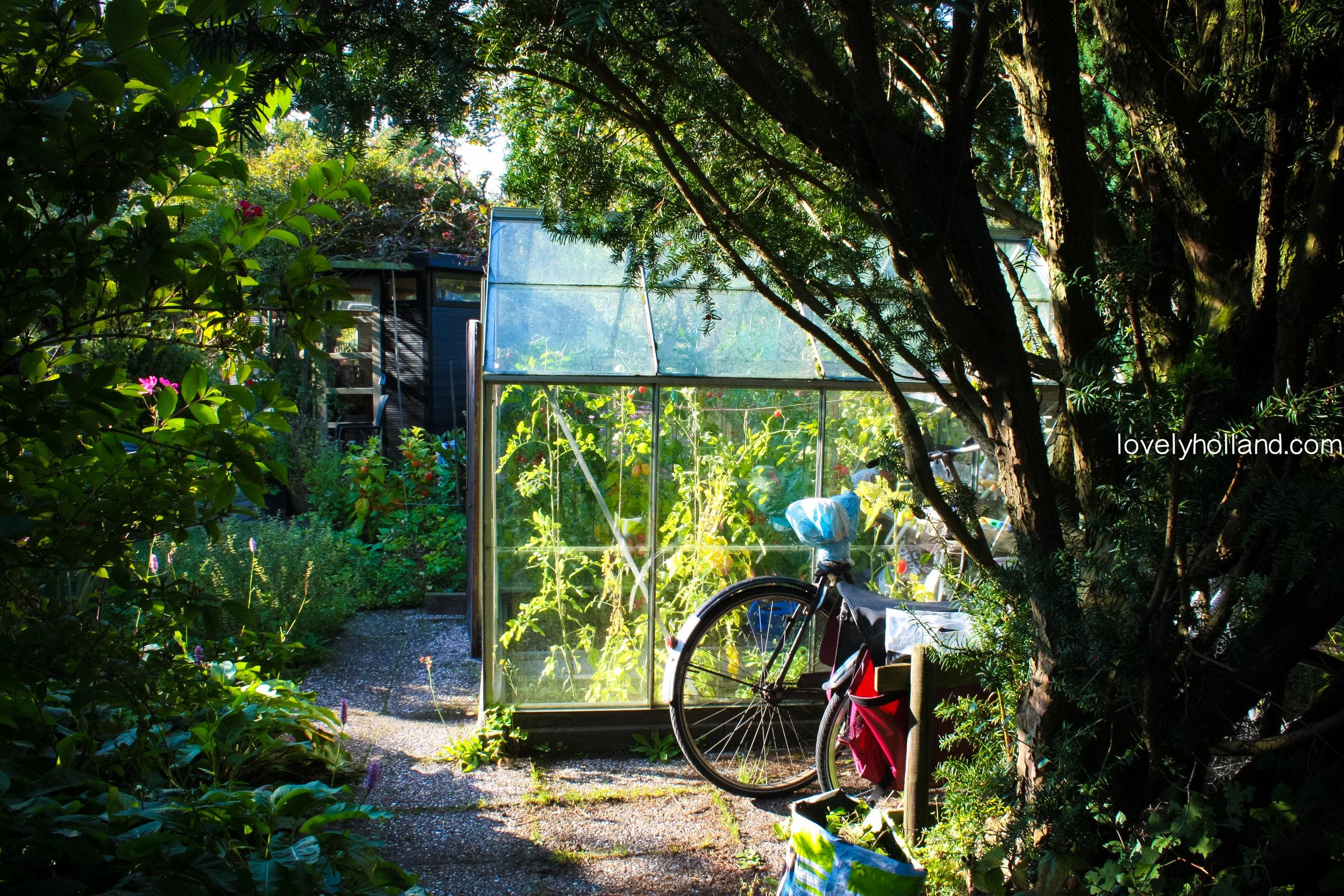 農圃裡的小溫室
