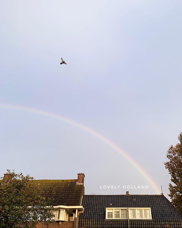 荷蘭最近一直下雨下雨,讓人心情很不好。偶而太陽露個臉,但沒一會兒又再濕冷灰暗。還好的是,在晴雨之間偶爾能看到美麗彩虹! . . It's been raining so much recently in the Netherlands. The only good thing is, if sun comes out few minutes, we possible get few second to see rainbow! 🌈 . . #lovelyholland #holland #rainbow #彩虹 #荷蘭 #阿姆斯特丹🇳🇱 #阿姆斯特丹 #歐洲 #雨 #loveamsterdam