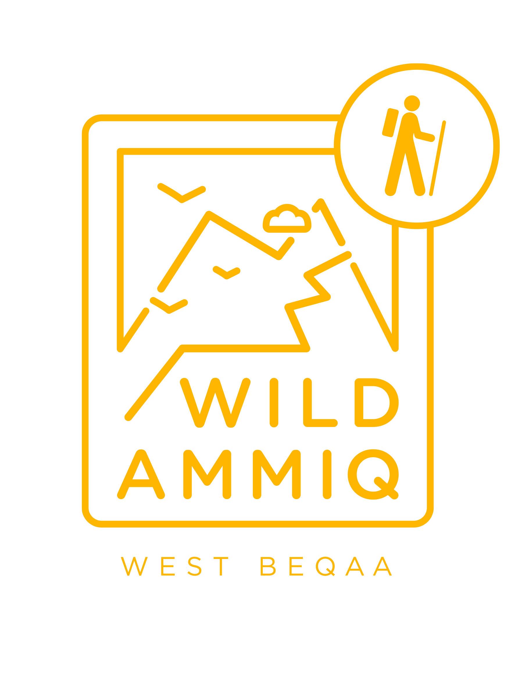 Wild_Ammiq_Logo_Walk.jpg
