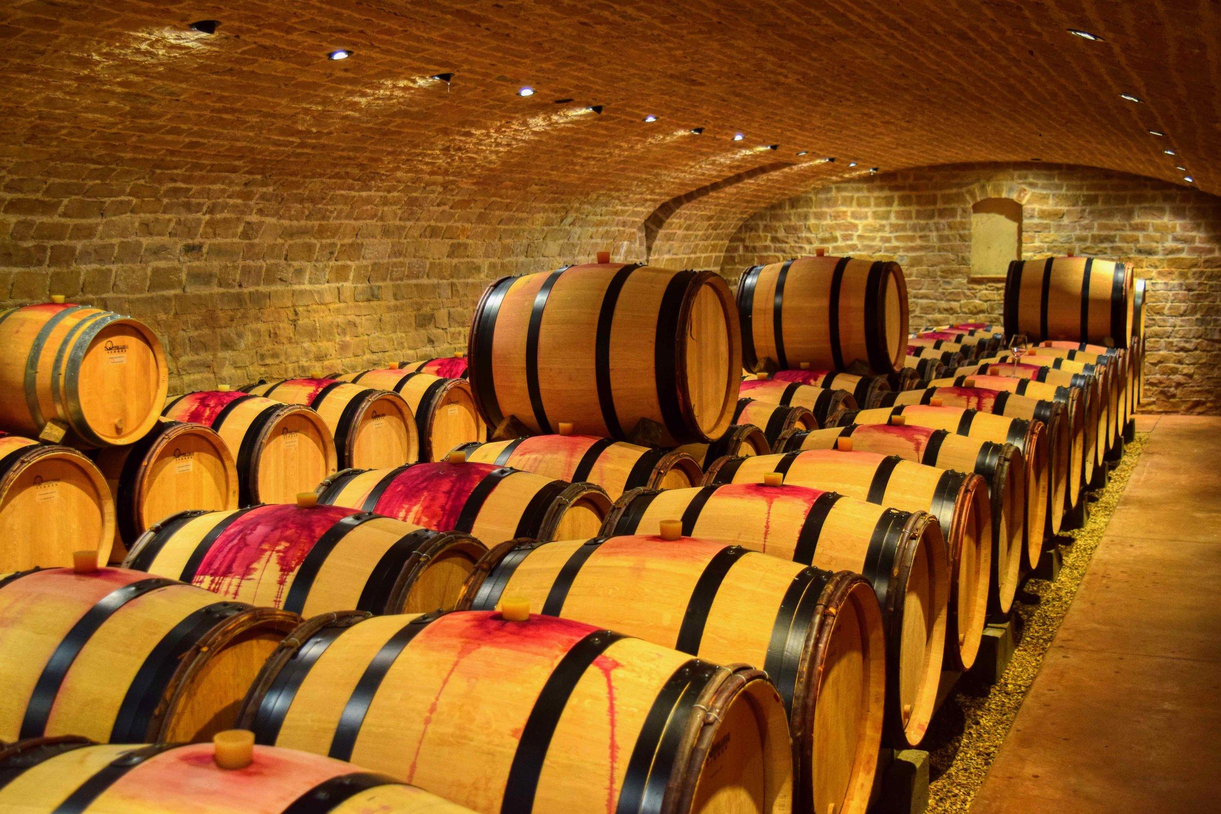 St Malo Fil Rouge sylvain cathiard — vintage and vine