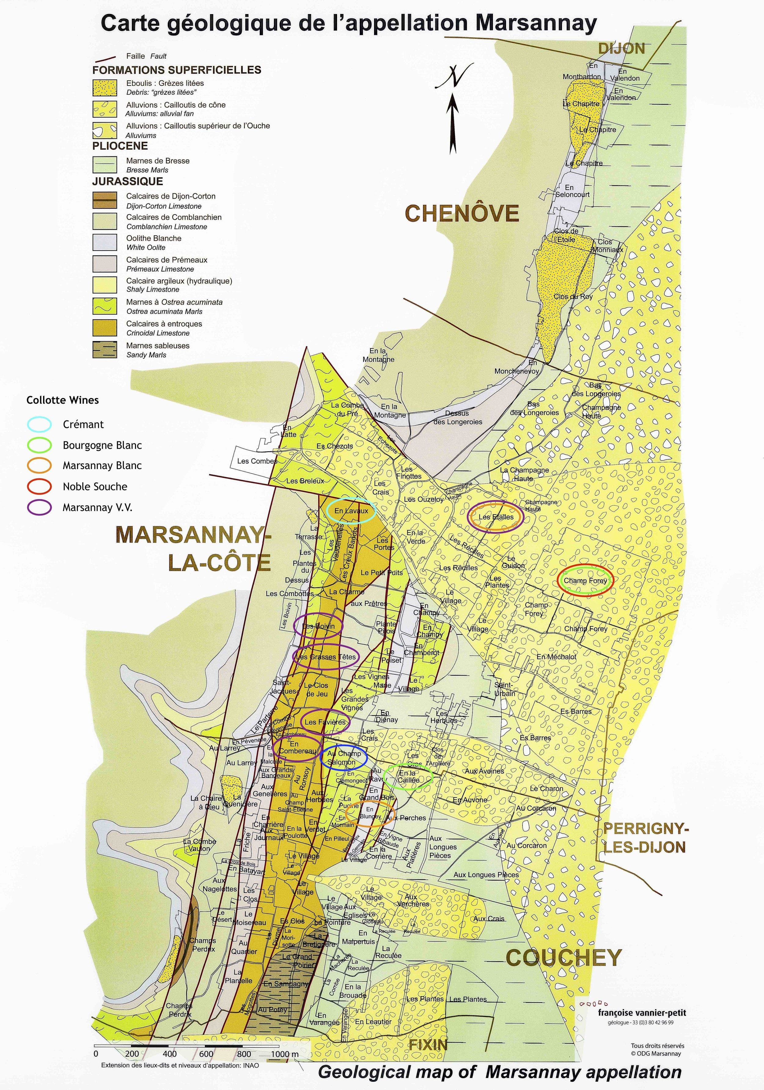 Soils of Marsannay
