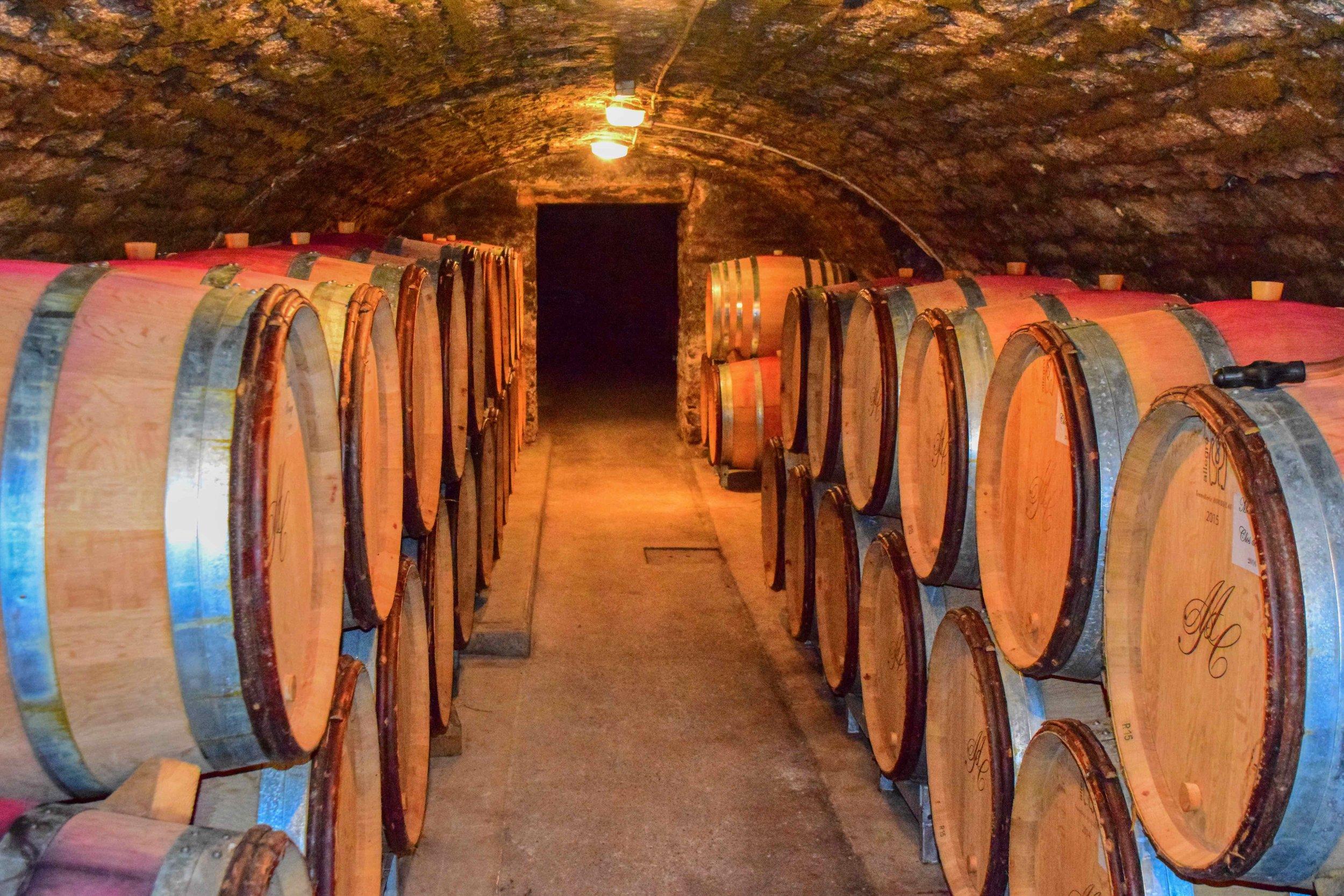 The Collotte Cellar