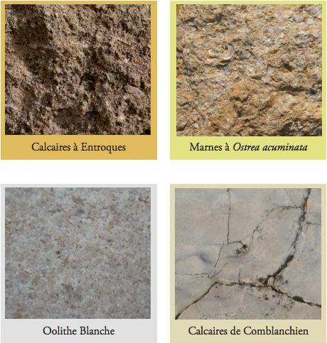Limestones of Marsannay