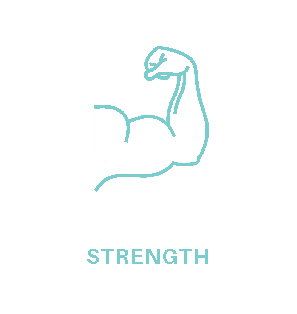 03.strength.png