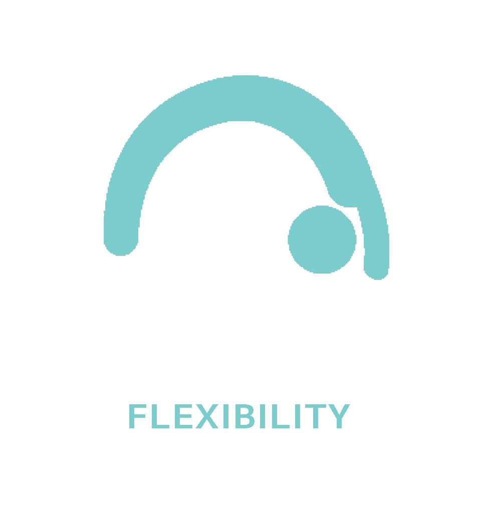 04.flexibility.png