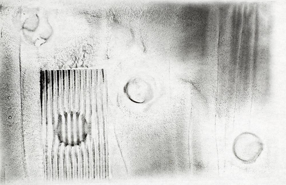 48---Schuster---Ferrodolia---experiment--3-Resized.jpg