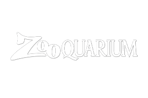 ctm-zooquarium.png