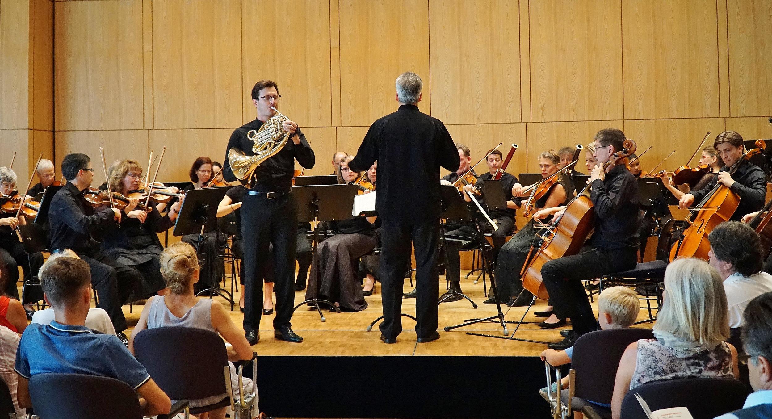 Überzeugender Auftritt: Hornist Marc Gruber und das Orchester Collegium Musicum unter Leitung von Arndt Heyer beim Schlosskonzert im kleinen Saal der Aschaffenburger Stadthalle. ⋌Foto: Melanie Pollinger
