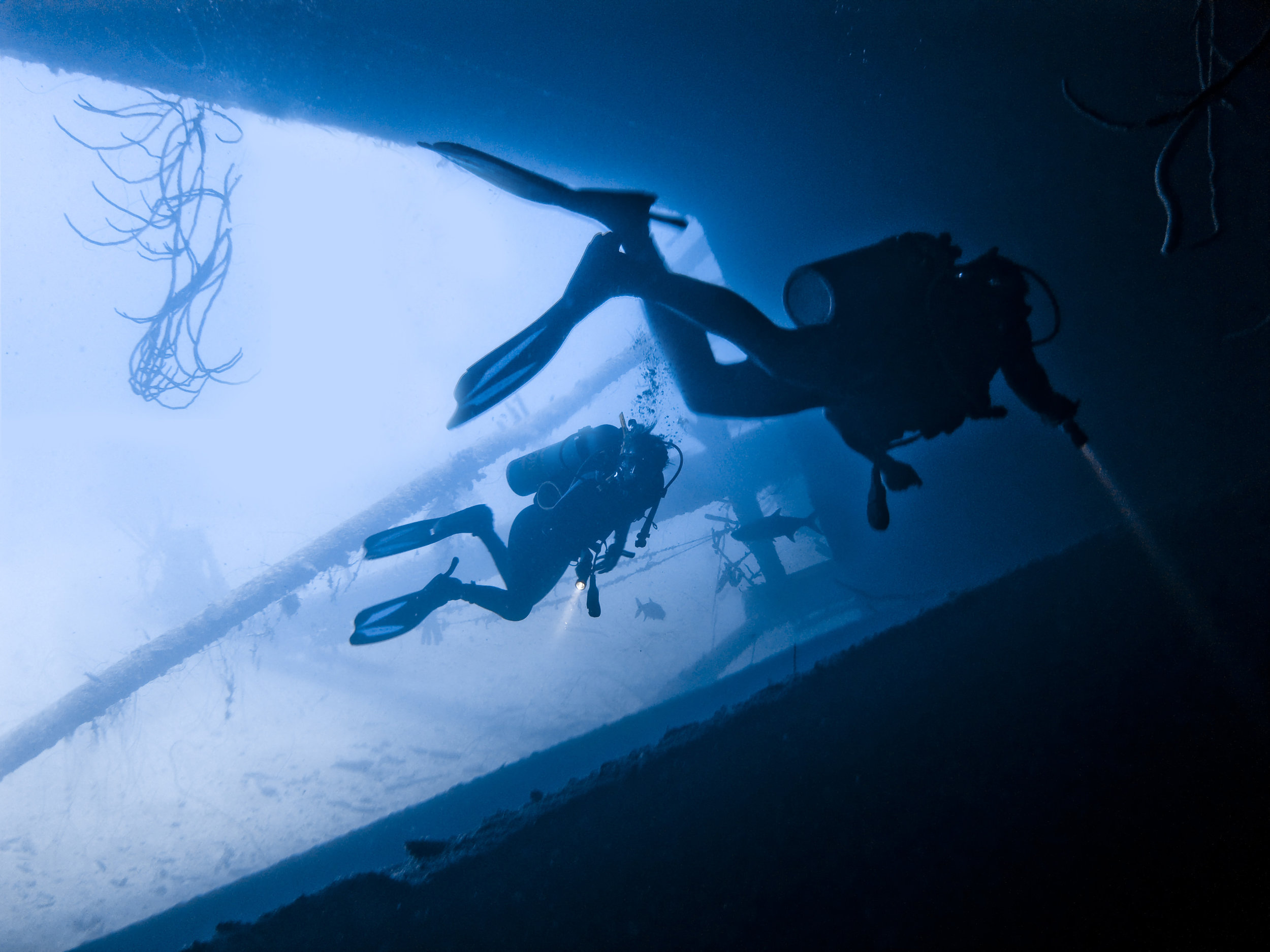 Wreck - Learn how to use a reel to navigate your way into a wreck. Explore some of the broken wrecks we have on the island.4 dives$240 USD
