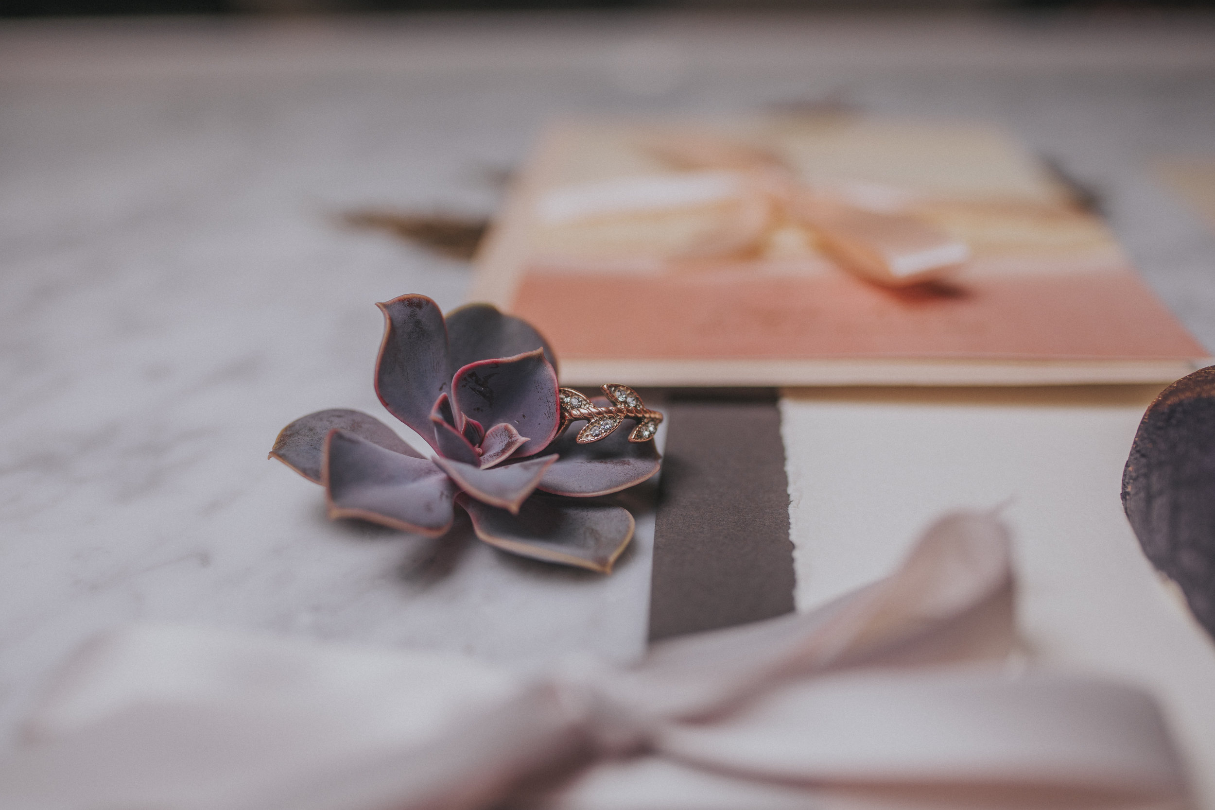 22  omaha-nebraska-empire-room-tiny-luxe-wedding-planner.jpg