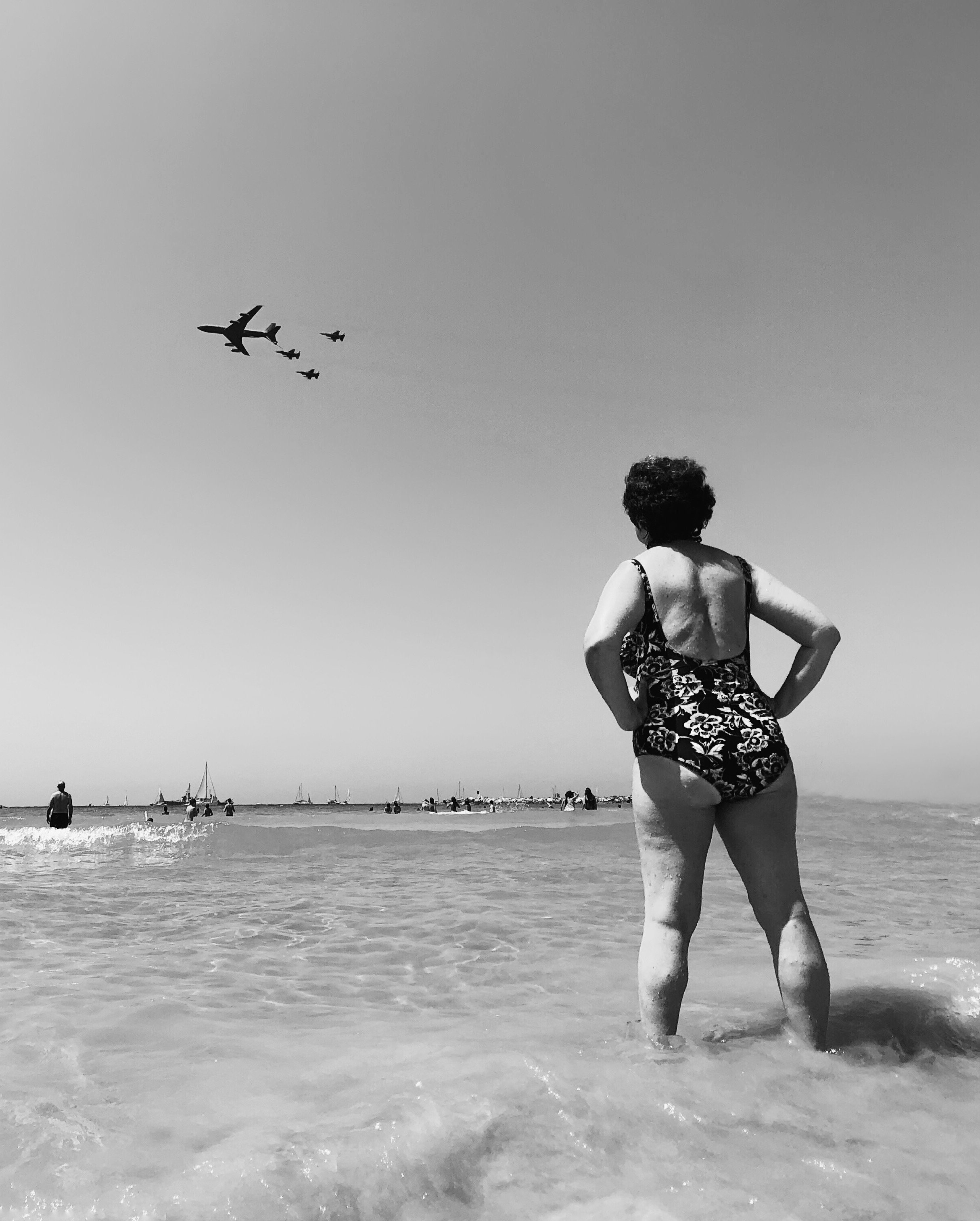 Airplanes and Flowers by Dina Alfasi