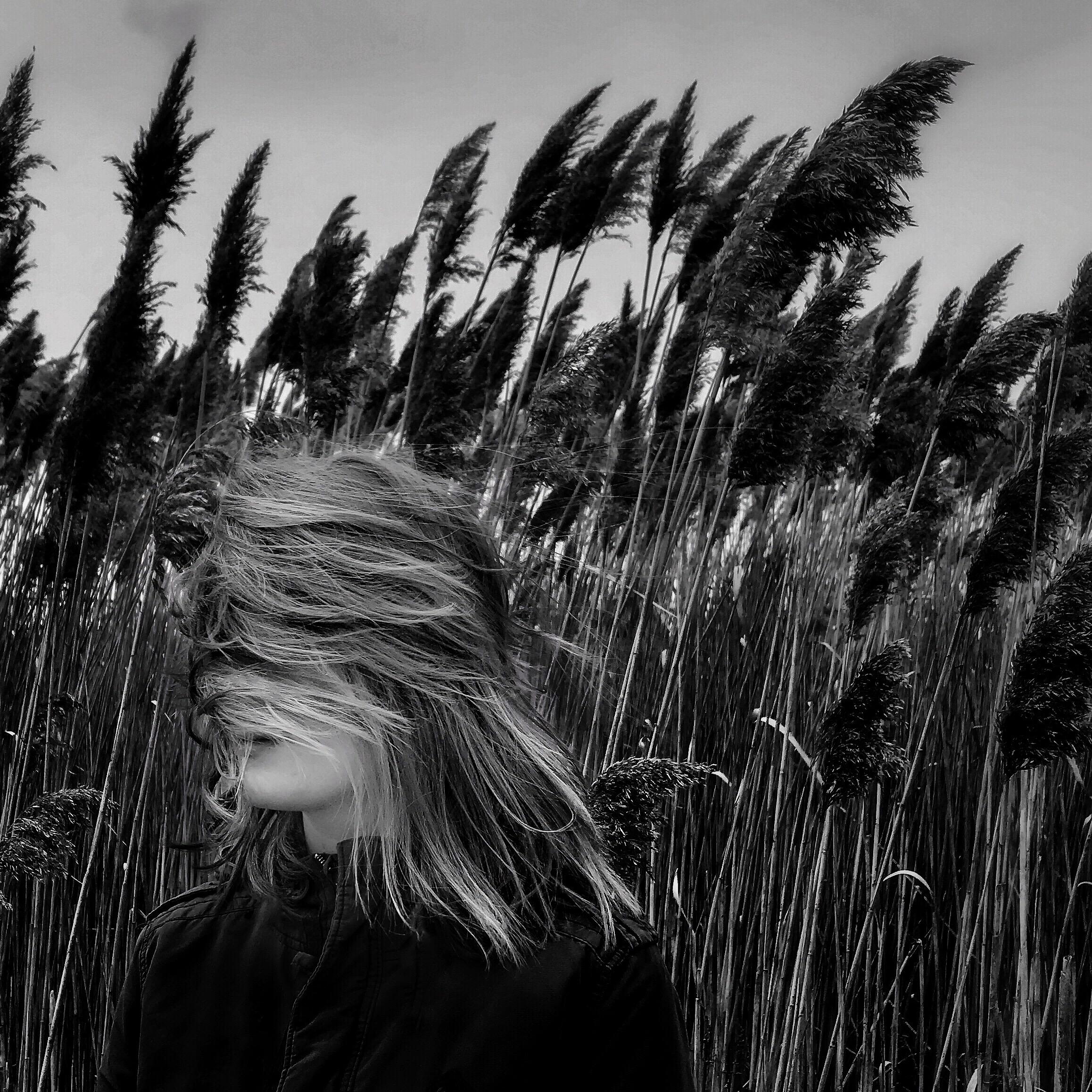 Will the Wind Remember by Nicola Pratt