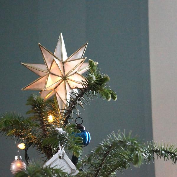tree-star.jpg