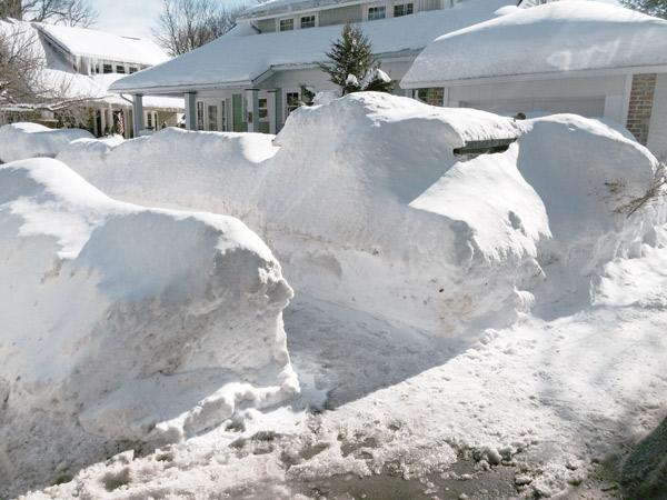 millie-w25-snow1.jpg