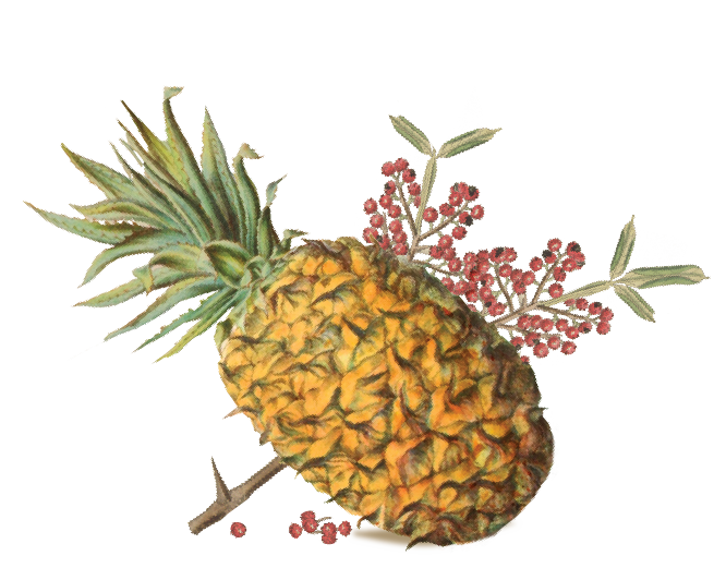 pineapple-pepper.png