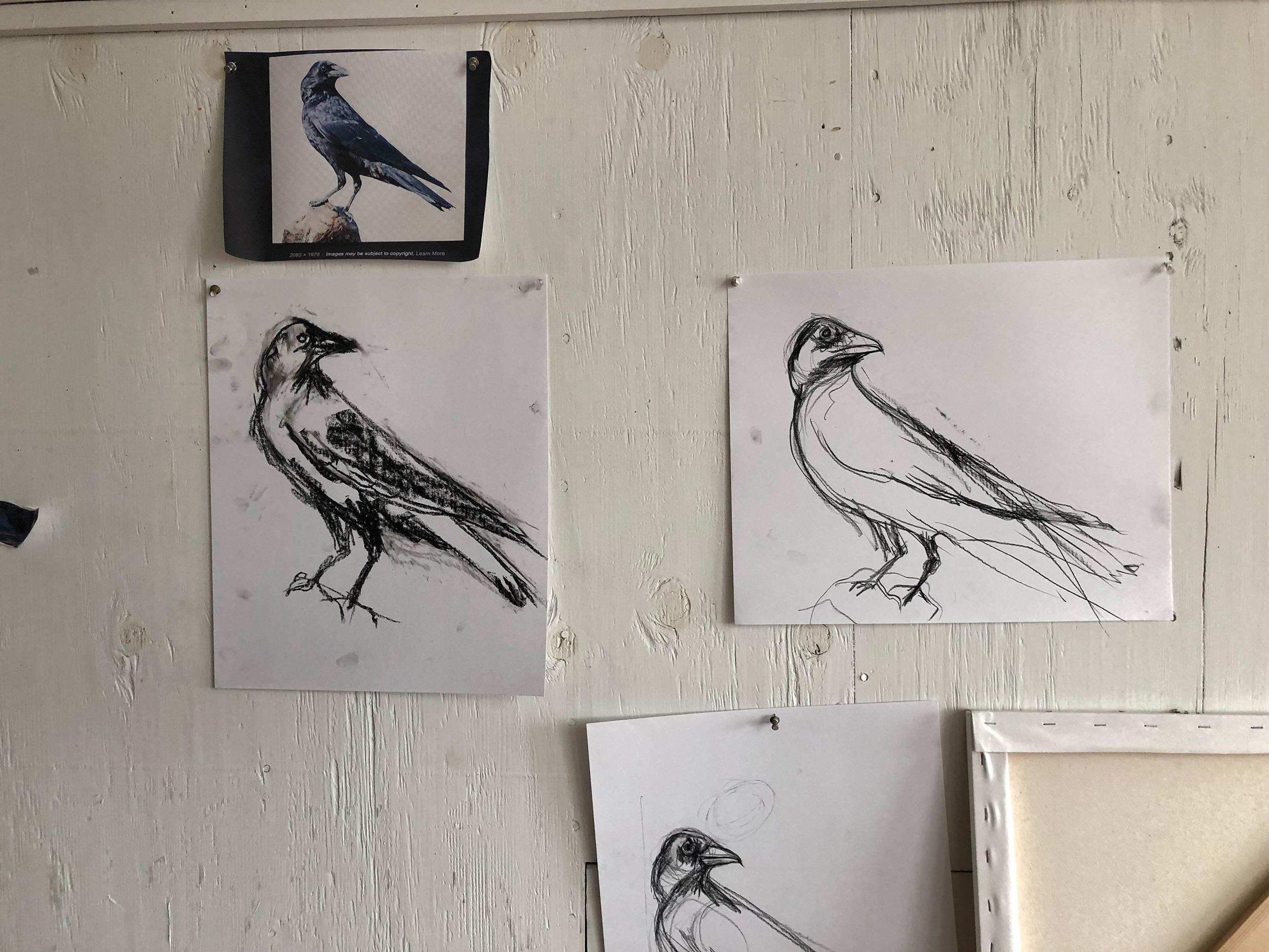Crows - 1.jpg