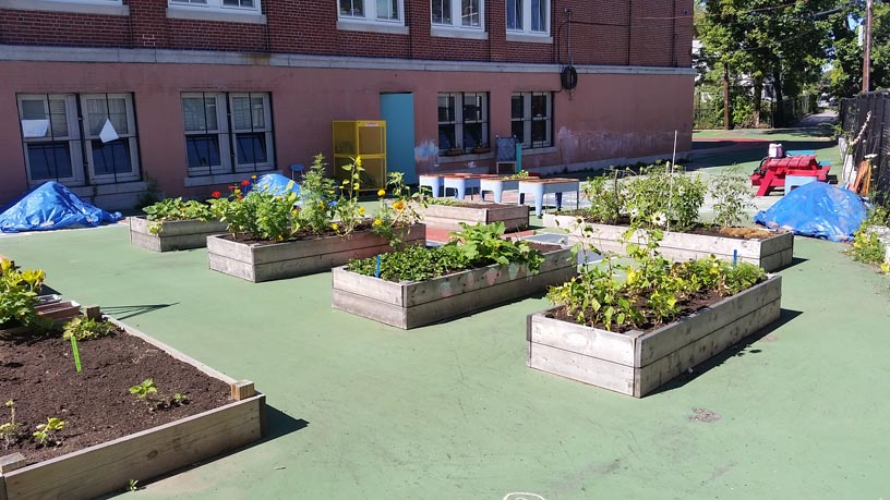 Lee-Academy-garden.jpg