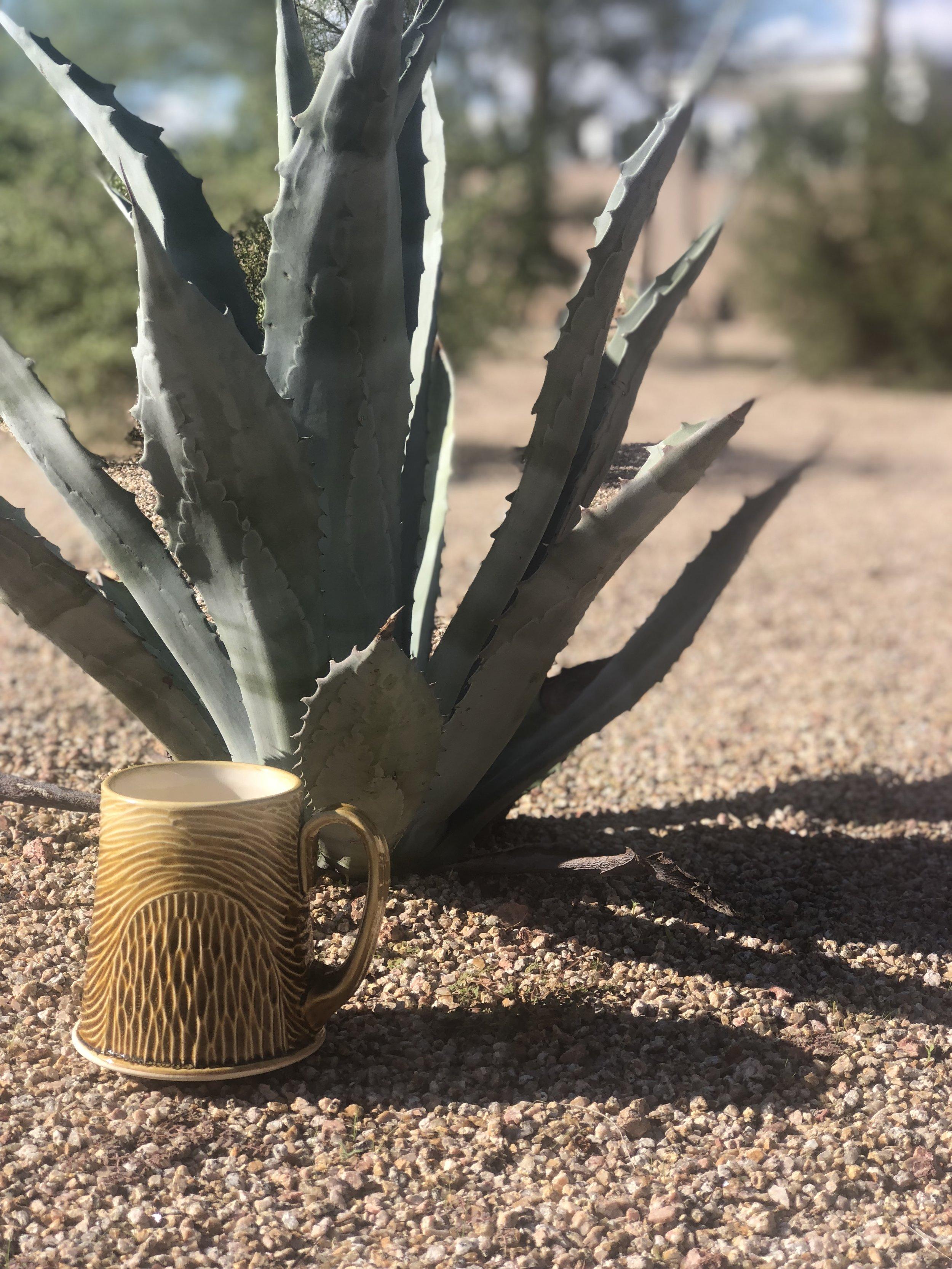 Arizona Mug 1.jpg