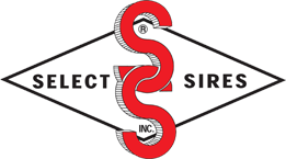 select sires beef logo.png