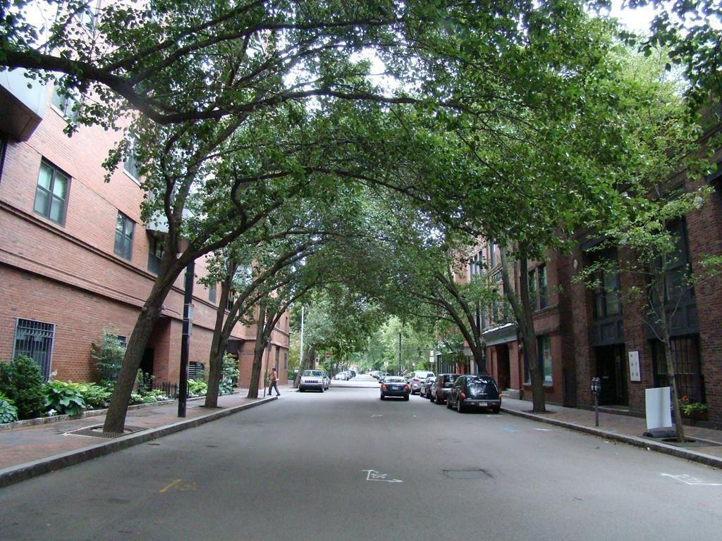 Harcourt Street View.jpg
