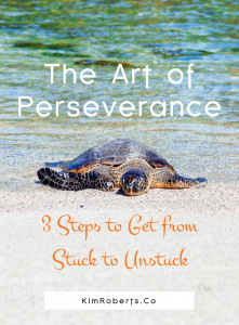 The Art Of Perseverance 3 Steps To Get From Stuck To Unstuck | KimRoberts.Co
