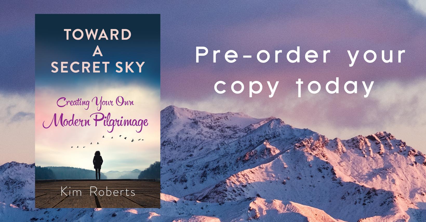 Toward a Secret Sky Pre Order-FB Group Cover (1).png