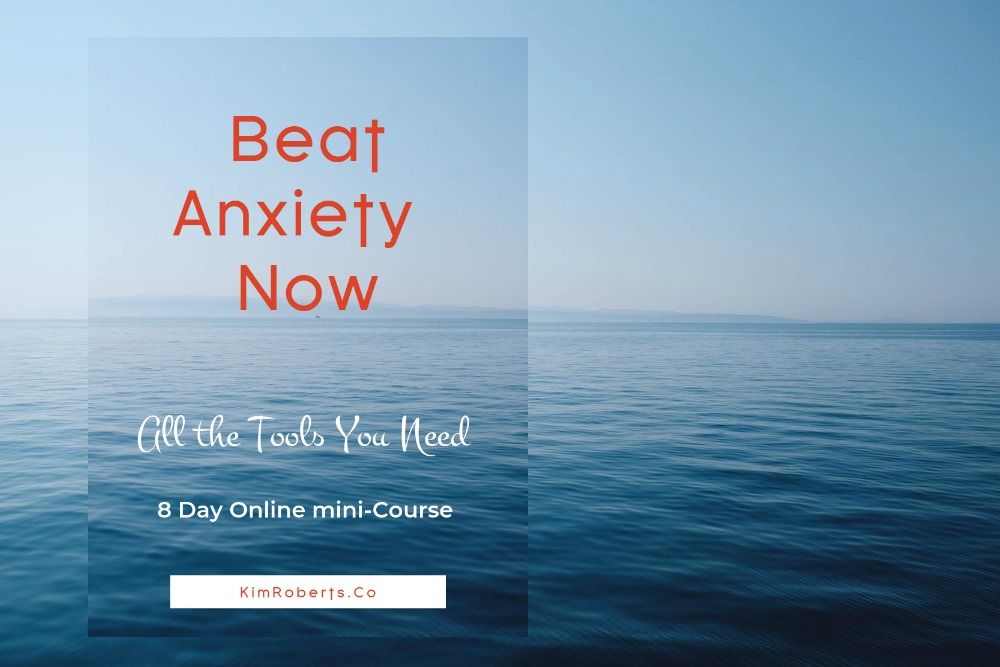 Beat Anxiety Now - In this course, we cover a variety of tools, tips, practices and resources that will teach you the skills you need to effectively manage anxiety and other difficult emotions.So that they no longer manage you.Enroll Now