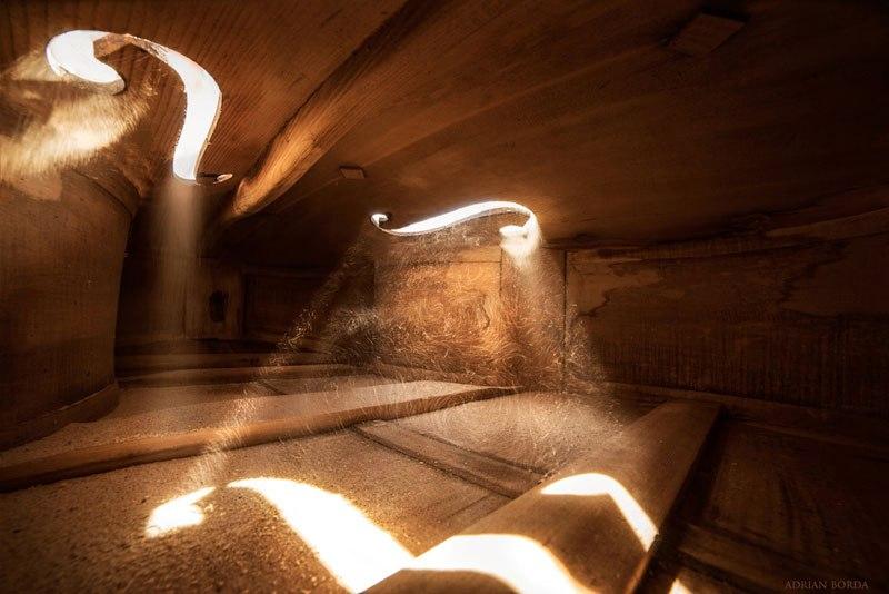 photos-inside-a-cello-1.jpg