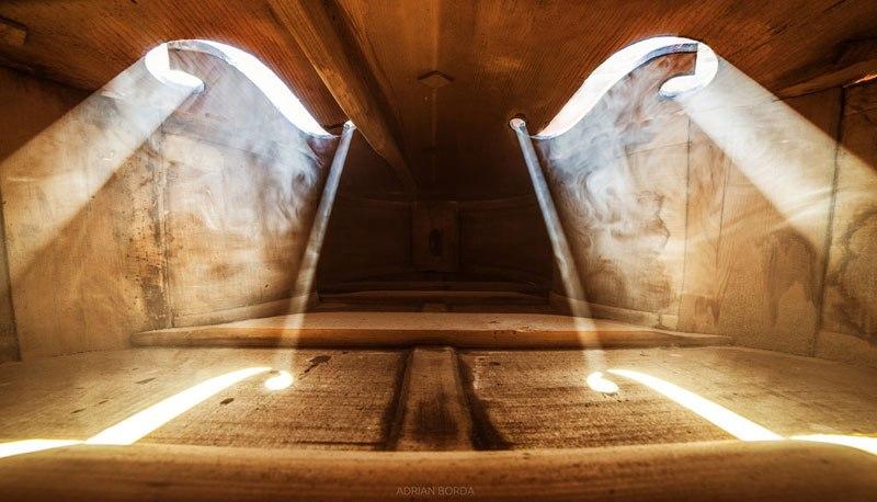 photos-inside-a-cello-4.jpg