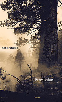 """Permission - """"Peterson is a poet whose generosity lies in giving the reader something to do — to register the successive jolts and calms of comprehension.""""– Ron Slate"""