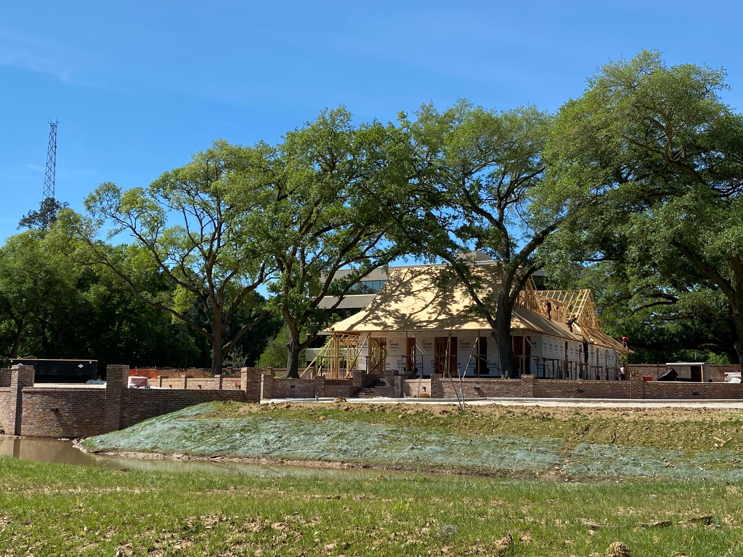 This Iberville Grove progress photo was taken on April 1, 2020. Here you see the pond, eye-catching retaining walls, and the beautiful oak trees that frame the building.