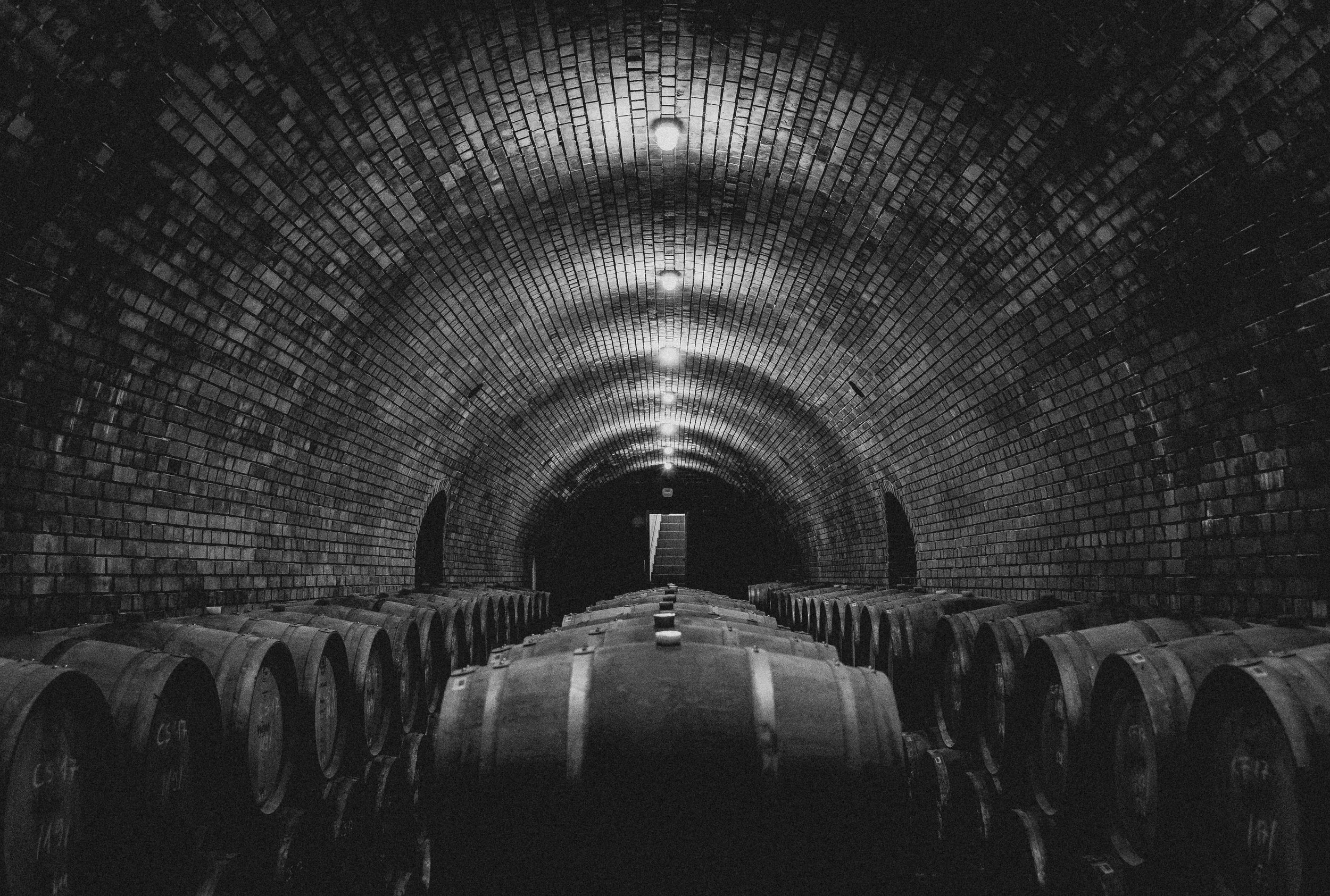 Wines - Explore Our Portfolio