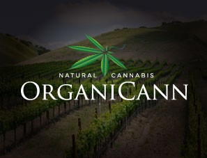 ORGANICANN-SANTA ROSA - Located at 301 E. Todd Rd., Organicann offers a HUGE variety of flowers, concentrates, edibles, and even clones! It is a huge and beautiful space. With a focus and an obvious love for sungrown flowers we are very proud to be partnered with Organicann and will have more and more of our products available there.