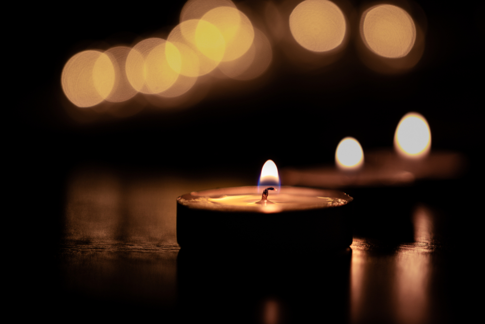 shutterstock_1177786336_earth hour image .jpg