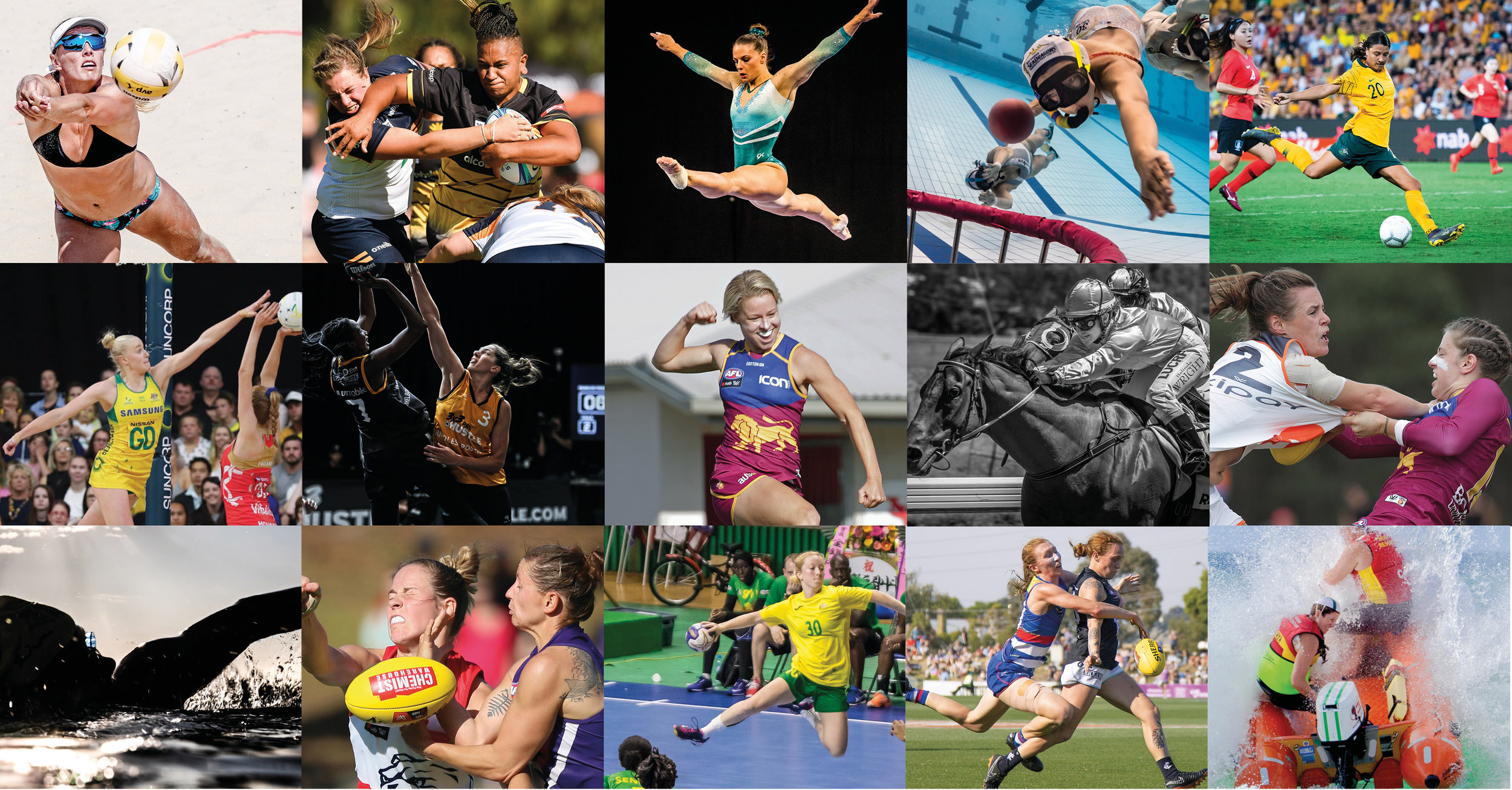 Top row left to right:  Olivier Rachon Vic beach volleyball; Johan Schmidt WA rugby; Alexander Bogatyrev Vic gymnastics; Marcia Riederer Vic underwater rugby; Stephanie Meek NSW soccer;  Second row left to right:  May Bailey NSW netball; Angelo Cabansag Vic basketball; David Layden Qld AFLW; Robyn MacRae NSW horse racing; David Layden Qld AFLW.  Second row left to right:  May Bailey NSW netball; Angelo Cabansag Vic basketball; David Layden Qld AFLW; Robyn MacRae NSW horse racing; David Layden Qld AFLW.  Third row left to right:  Marcia Riederer Vic swimming; Philip Barnes WA AFLW; Bob Wood NSW handball; Megan Brewer Vic AFLW; Therese Glowaski Qld 4218 Surf lifesaving.