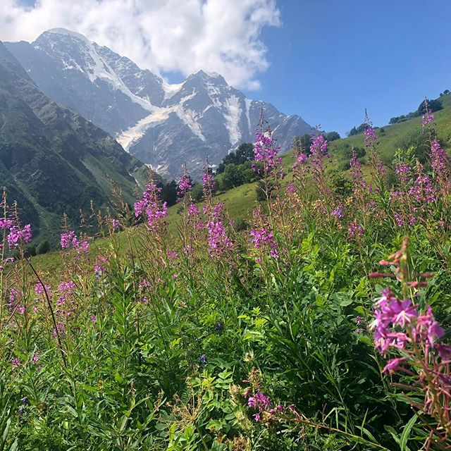 Acclimatization hike up Cheget : 🌸🏔🌸 here I realized the importance of moving at the pace your body resonates , and not the pace of ofhers ..... I'm here climbing Elbrus alone - my first solo attempt of a major mountain . I'm grateful for the opportunity to have solitude in the mountains - to have time to stop when I want to dance or meditate, speed up or make a dead stop when I want to stop and pick some flowers to weave a crown - which I did . .  I've never aligned with the commercial climbing group thing - always felt their pace was not mine and I felt stifled... in their requirement to keep a certain pace and stay with the group there were many photos I couldn't take.. opportunities missed to not just see the beauty that is abundant and surrounding  but truly absorb and consume it . . . It's obvious if the pace set is too fast for you, it tires you out and you struggle - but what I just realized is that if the pace is too slow, a similar energetic drain occurs... .  Carry this sentiment over into the everyday - how often are you making sure you keep pace with a stride set by others ? Set in their track , and not aligning with what resonates and suits YOU more . . . So caught up perhaps not realizing you were meant to create for yourself a crown? 😊👸🏻. . #gypsy #authenticity #selfcare #mountaineering #girlswhoclimb #girlswhohike #mountainbabes #mountaingirls #cheget #elbrus #7summits #highaltitude #spirituality #ascension #conscious #consciousness #mountainlove #healer