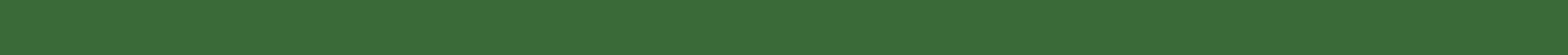 green bar separator.jpg