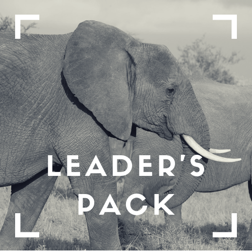 Leader's PACK - Do you have a great story to tell but are failing to succeed with traditional communication channels?Do you have great talent but they're too busy to tell the story?Are you at the pointy end of your campaign and need an adrenaline injection of engagement to end on a high?