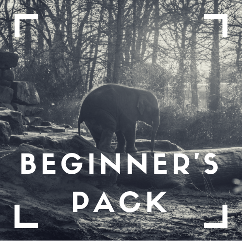 Beginner's Pack - Are you ready to share your story?Want to begin with channels you know achieve good cut through?Want to build a healthy content pool?Acquire a reputation as an engaging commentator?Use your promotional time effectively and efficiently?