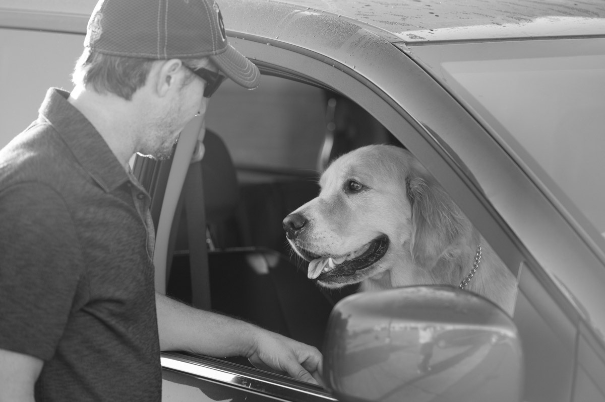 Dean works with professionals in the film industry and brings his dog handling expertise to the set