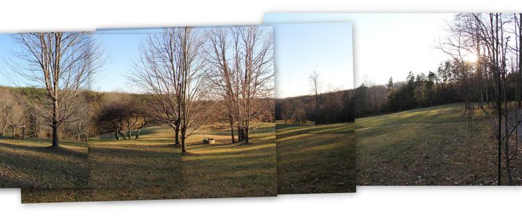 collage 1 crop753x315.jpg