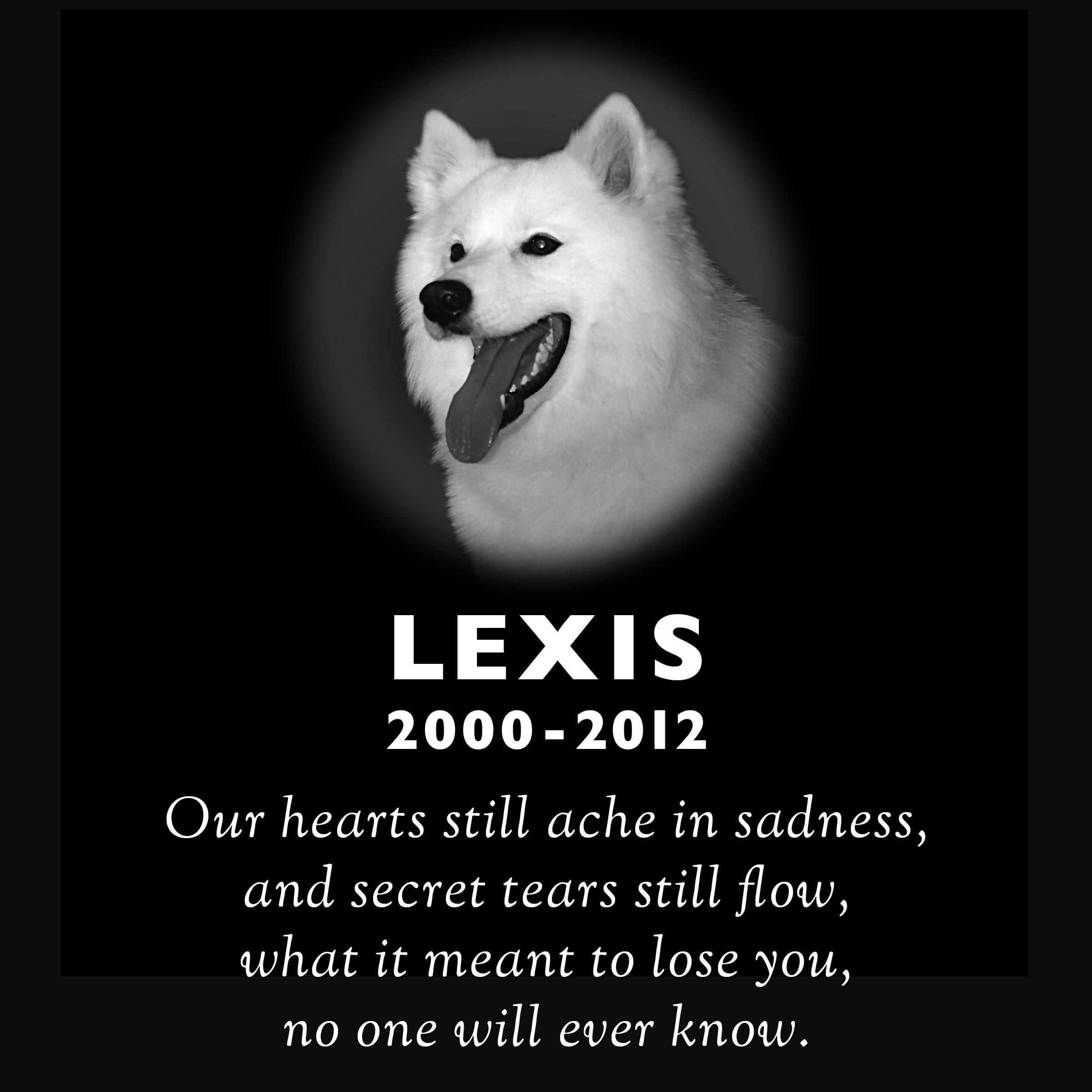 Lexis_layout.jpg