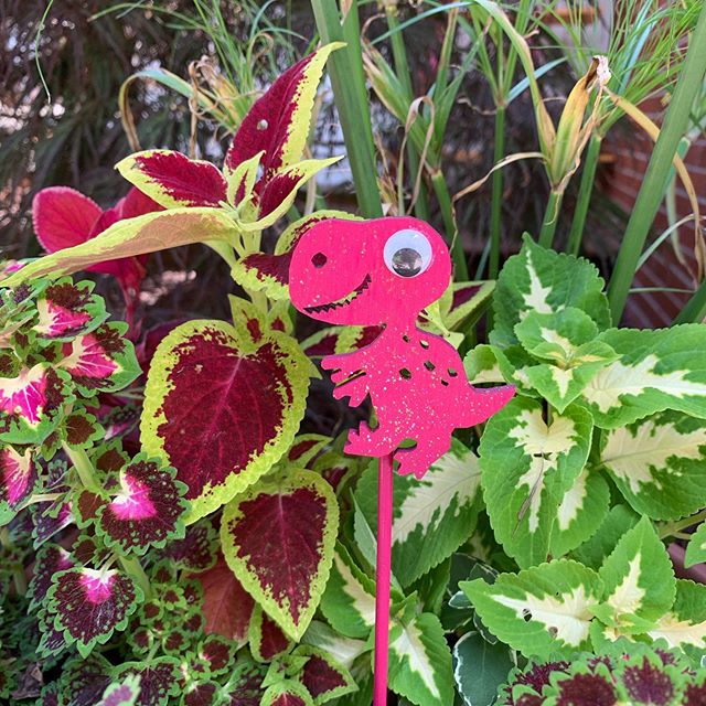 Rawr! #trex #bouquetpicks #newdesigns #babyshower #centerpiecesideas #hotpink #dinosaursareforgirlstoo 💕 #shimmer #glitter