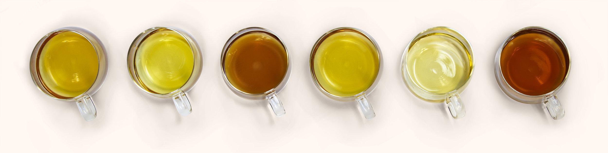 Sweet Fern Brewed Teas.jpg