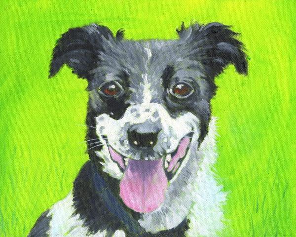 mary kemp Fizzy oil on canvas 10 x 8 ss .JPG