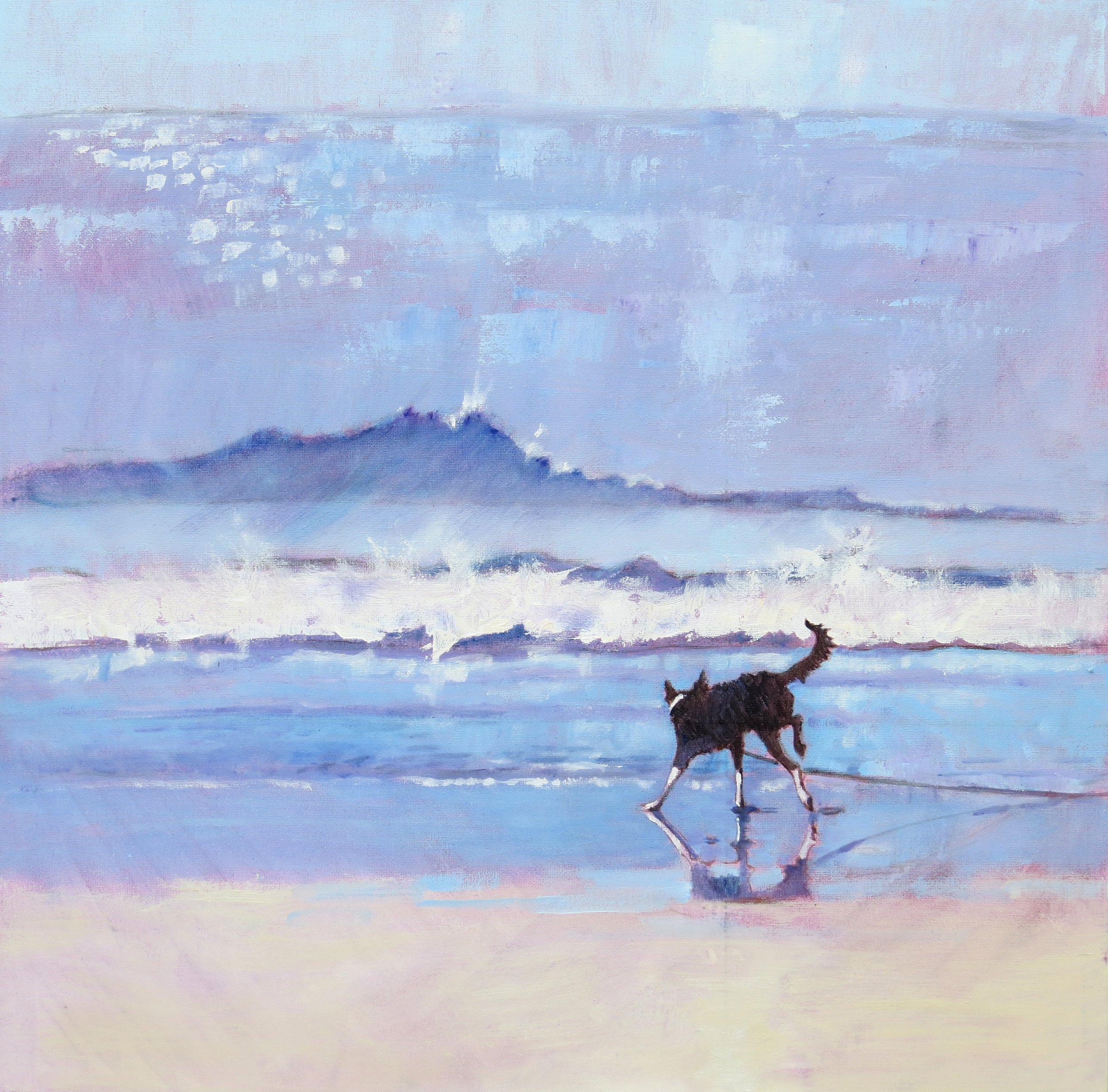 Mary Kemp - Grace the Border Collie Encounters a Wave No 2 ..jpg